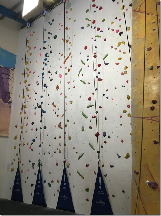 New Auto Belays at Reach Climbing