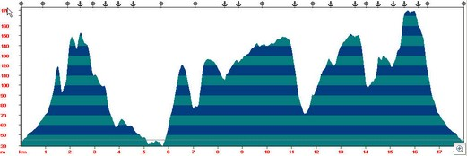 Wye Walk Elevation Profile